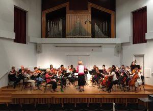 Adult Strings Ensemble concert